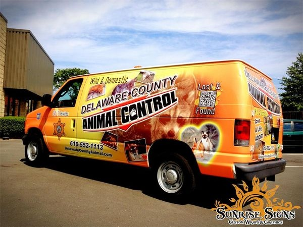 Ford cargo van wraps